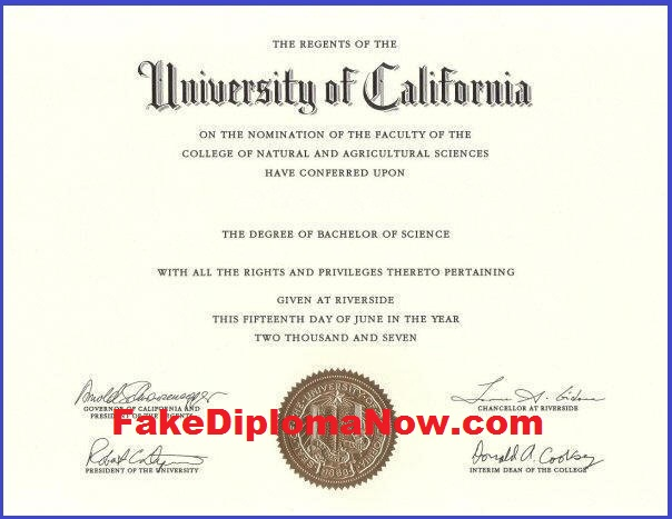 Drawbacks Of Obtaining A Fake Diploma And Other Fake Degrees – Luci ...